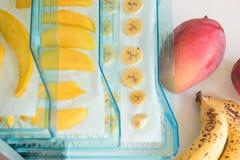 Fruits de séchage dans la machine de séchage Photos stock