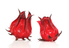 Fruits de sabdariffa ou de roselle de ketmie Photo stock