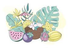 FRUITS de TROPIQUE colorés d'illustration de vecteur tropical d'été d'océan de mer illustration libre de droits