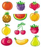 Fruits de vecteur photo libre de droits