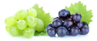 Fruits de vert bleu de raisins d'isolement sur le blanc Photographie stock libre de droits