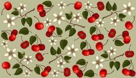 Fruits des cerises et des fleurs sur un fond gris Configuration illustration libre de droits