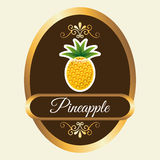 Fruits design Royalty Free Stock Photography