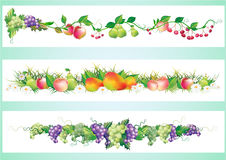 Fruits diet border Stock Images