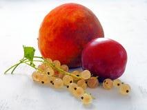 Fruits et baies d'été en gros plan sur le Tableau en bois blanc image stock