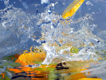 Fruits et eau Photos stock