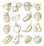 Fruits et légumes d'aspiration de main Photo libre de droits
