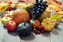 Fruits et légumes d'automne photo stock