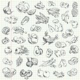 Fruits et légumes de dessin de dessin à main levée Images stock
