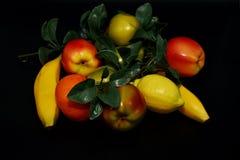 Fruits et légumes de Faux Photo stock