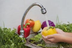 Fruits et légumes de lavage Images libres de droits