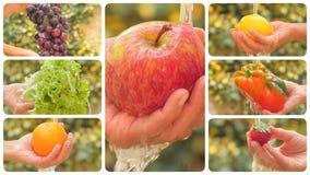 Fruits et légumes divers sous le montage de versement de l'eau banque de vidéos