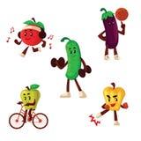 Fruits et légumes faisant des exercices de sport Photographie stock libre de droits