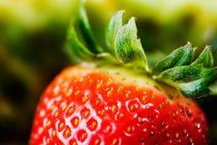 Fruits et légumes frais Photographie stock