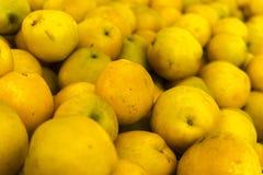 Fruits et légumes organiques sur le marché d'agriculteurs : Wilson Park, T photos stock