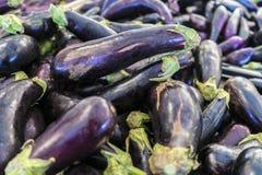 Fruits et légumes organiques sur le marché d'agriculteurs : Wilson Park, T Image stock