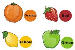 Fruits et ronds Illustration Libre de Droits