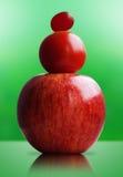 Fruits of evolution Stock Image