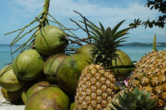 Fruits exotiques sur un fond de mer Photos stock