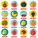 Fruits flat icon set. Colorful template for Stock Images