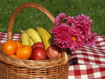Fruits and flowers Stock Image