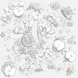 Fruits and flowers background. Black and white vector illustration