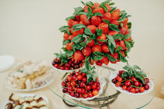 Fruits and flowers on banquet table, catering Stock Photography