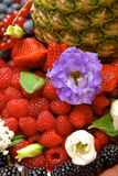 Fruits flowers and berries royalty free stock photography