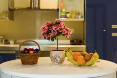 Fruits and flowers in blue interior kitchen Royalty Free Stock Images