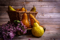 Fruits and Flowers Stock Photo
