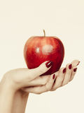 Woman hand holding delicious red apple Stock Photos