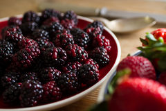 Fruits of the forest: blackberries Royalty Free Stock Images