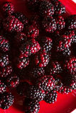 Fruits of the forest: blackberries Stock Photos