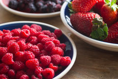 Fruits of the forest: raspberries Stock Images