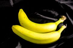 Two fresh sweet yellow and green banana`s. Fruits of four different banana cultivars Stock Photo