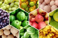 Fruits frais Photographie stock