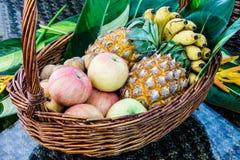 Fruits frais dans un panier Photos stock