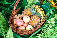 Fruits frais dans un panier Photographie stock