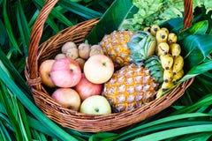 Fruits frais dans un panier Image stock