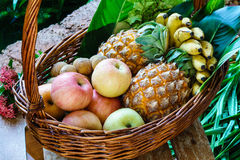 Fruits frais dans un panier Images libres de droits