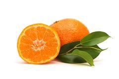 Fruits frais de mandarine Photographie stock
