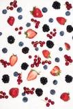Fruits frais en yaourt crémeux image libre de droits