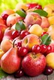 Fruits frais et baies Photos libres de droits