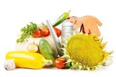 Fruits frais et légumes d'isolement sur le blanc Photos libres de droits