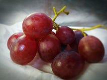Fruits frais et sains de raisin Image stock