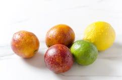 Fruits frais et succulents sur la table de marbre blanche Oranges sanguines, chaux et citron photos stock
