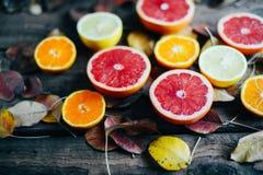 Fruits frais Fond mélangé de fruits Consommation saine, suivant un régime Fond des fruits frais sains Salade de fruits - régime,  Photographie stock libre de droits