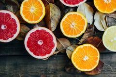 Fruits frais Fond mélangé de fruits Consommation saine, suivant un régime Fond des fruits frais sains Salade de fruits - régime,  Image stock
