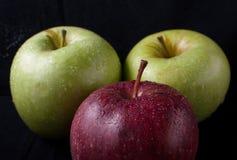 Fruits frais sur un fond noir photos libres de droits