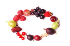 Fruits frame Royalty Free Stock Photo